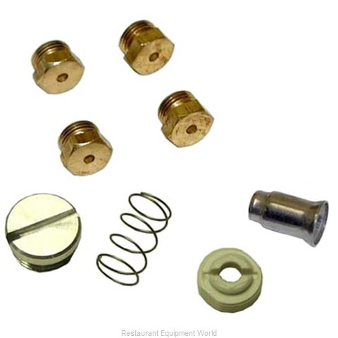 All Points 51-1236 Conversion Kit Gas