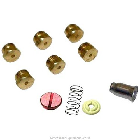 All Points 51-1241 Conversion Kit Gas