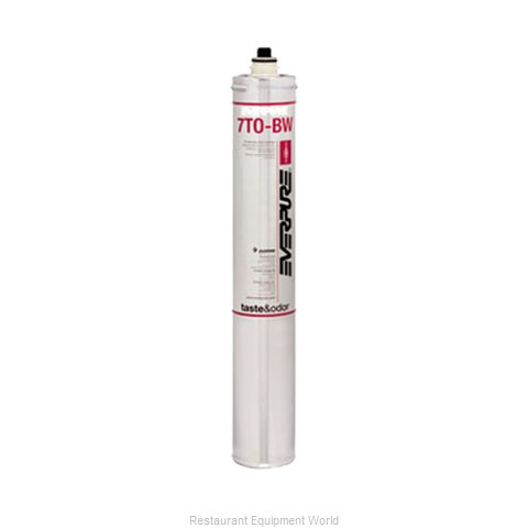 Everpure Ev9627 04 Reverse Osmosis Replacement Cartridge