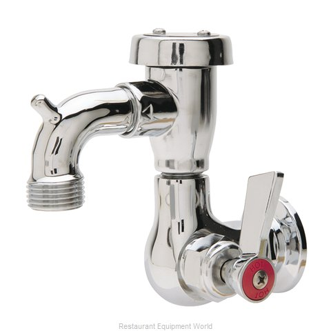 Fisher 29556 Faucet, Single Wall Mount, with Hose Threads