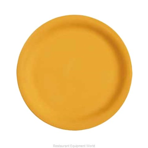 GET Enterprises NP-9-TY Plate, Plastic (Magnified)