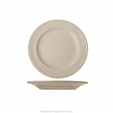 International Tableware NP-6 Plate, China (Magnified)