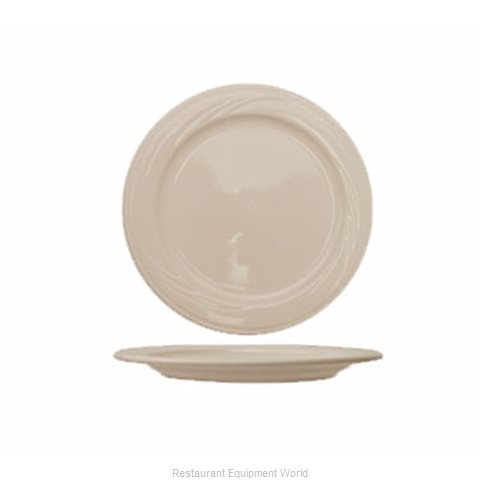 International Tableware Y-6 China Plate (Magnified)