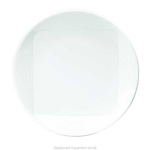 Oneida Crystal W6052344149 China Plate (Magnified)