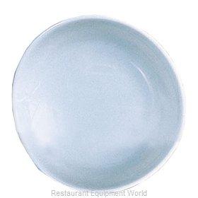 Thunder Group 1908 Plate, Plastic