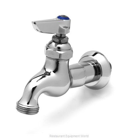 TS Brass B-0717 Faucet, Single Wall Mount, with Hose Threads