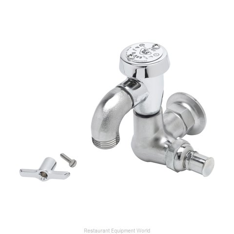 TS Brass B-0720-RGH Faucet, Single Wall Mount, with Hose Threads