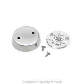 TS Brass B-0968-HA Vacuum Breaker Assembly