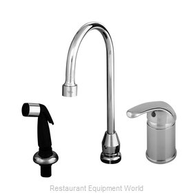 TS Brass B-2743 Faucet with Spray Hose