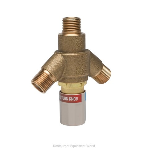TS Brass EC-TMV Valve Miscellaneous (Magnified)