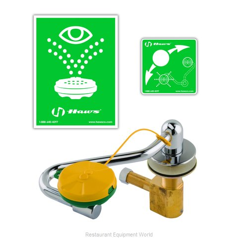 TS Brass EW-7611 Eye Wash Station