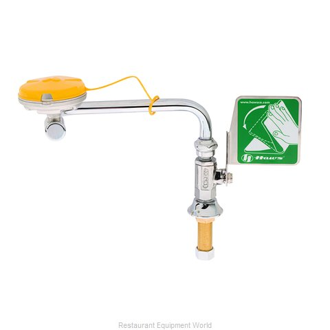 TS Brass EW-7612 Eye Wash Station (Magnified)