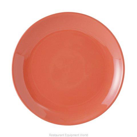 Tuxton China BNA-0904 Plate, China