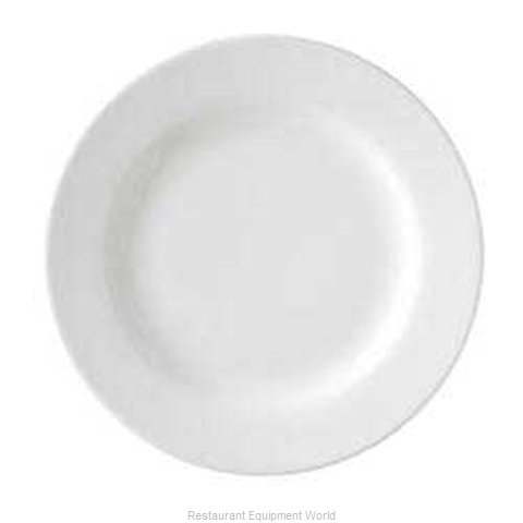 Vertex China RB-16-WBD China Plate (Magnified)